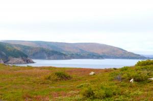 Study-CBU-Cape-Breton-Island-14